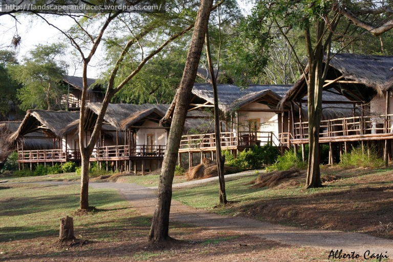 Cabins by the Nile